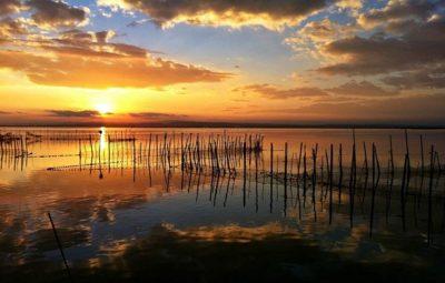 La Albufera: Disposiciones, amojonamiento y visitas reales